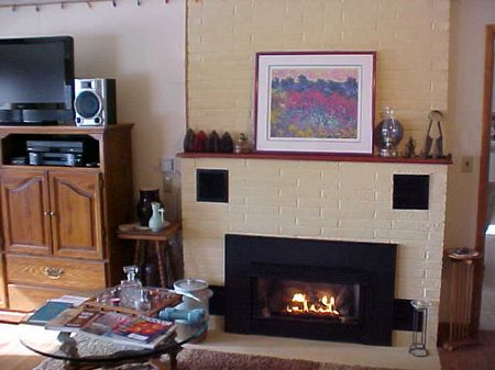 Mendota gas log fireplace is energy efficient and beautiful!